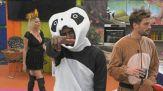 """Il """"panda Enock"""" si scatena"""