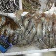 pulitura pesce