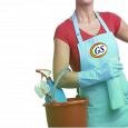 G S SERVICE DI GIAMBIRTONE SALVINA E C. pulizie