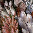 Azzurra Pesca PESCE