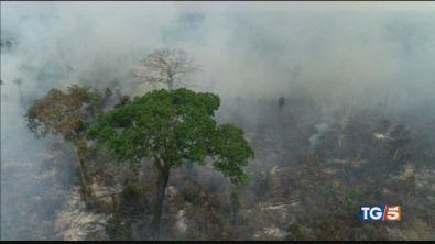 Brasile: no agli aiuti ma l'Amazzonia brucia