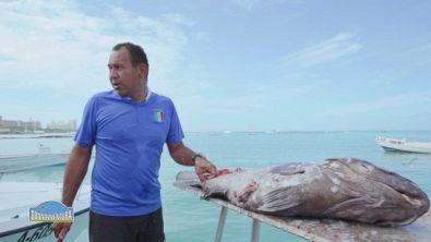 La pesca ad Aruba
