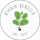 Vivaio Rebella