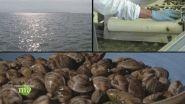 Agricoltori di mare