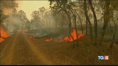 Australia tra le fiamme