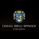 Tenuta Cerulli Spinozzi