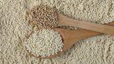 Cosa accade al tuo corpo se mangi ogni giorno cereali integrali