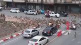Rivolta di scimmie in città, sembrano impazzite ma c'è un motivo