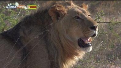 Zimbabwe, fascino naturale