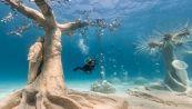 Cipro e l'incredibile MUSAN, il primo museo sottomarino del Mediterraneo