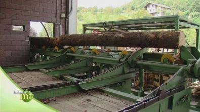 La lavorazione dei tronchi