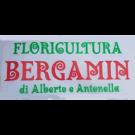 Fioreria Bergamin