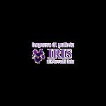 Iris Impresa di Pulizie