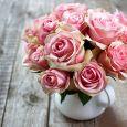 Vivai piante e fiori - Vivaio Il Melograno