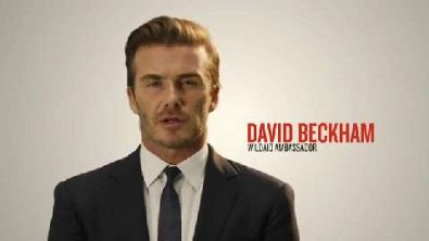 Animali: il messaggio di David Beckham, il principe William e Yao Ming