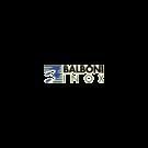 Balboni Inox