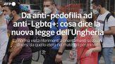 Da anti-pedofilia ad anti-Lgbtq+: cosa dice la nuova legge dell'Ungheria