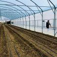 LA MATTERA SOCIETA' AGRICOLA serra