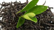 Come puoi riutilizzare le foglie (usate) di tè