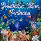 Pescheria Ittica Palmese