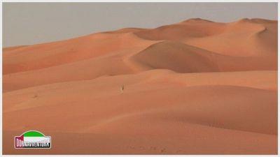 Donnavventura ad Abu Dhabi: alla scoperta della capitale degli Emirati Arabi Uniti