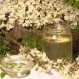 apicoltura manfredini mario - fiori d'acacia