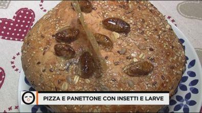 Pizza e panettone con insetti e larve