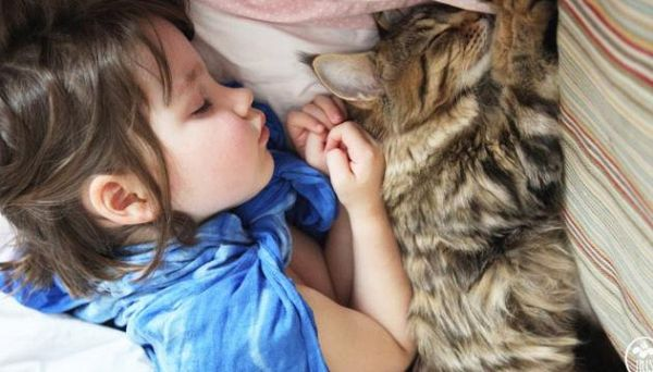 L'incredibile storia di Grace, la bimba autistica salvata da un gatto