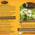 MIELE MORETTI  produzione miele