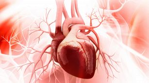 Miocardite, come riconoscerla e curarla