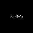 Audisio Pompe Funebri di Luca Bardone e Michele Ferrero Regis