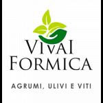 Formica Pietro Tindaro