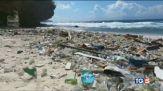 Raccogliamo plastica salviamo i nostri mari