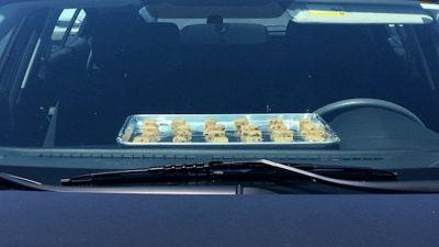 Cucinare i biscotti in auto? È possibile