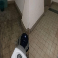 caserta service pulizie pavimenti