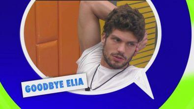 Goodbye Elia