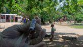 Covid, i rischi e i costi del non inviare i vaccini ai Paesi più poveri