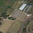 Agricola Bencini Tommaso azienda