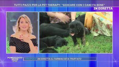 Tutti pazzi per la pet therapy