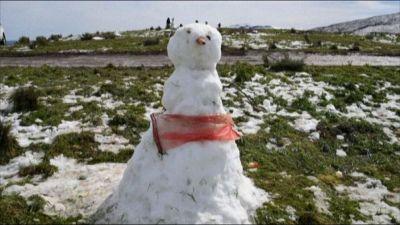 Nevica in Sudafrica, l'evento eccezionale scatena i turisti