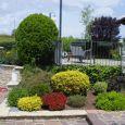 IL POLLICE VERDE manutenzione giardini