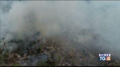 L'Amazzonia brucia oggi si apre il G7