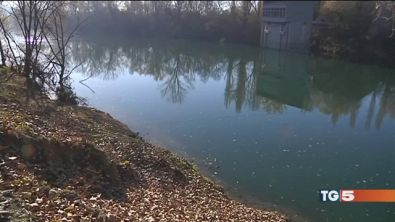 """Alluvionati Torino barriere """"fai da te"""""""