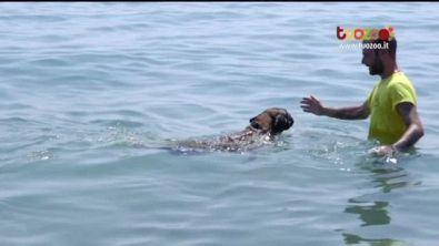 Nuoto e capacità riabilitative