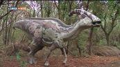 L'oasi del WWF di Macchiagrande a Fiumicino