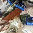 pescheria fresca