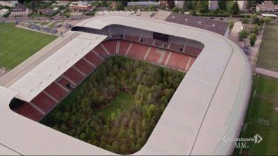 Lo stadio si trasforma in un bosco