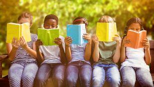 Il vecchio albero diventa una piccola biblioteca per bambini