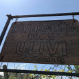 Tavernetta degli Ulivi ristorante foto