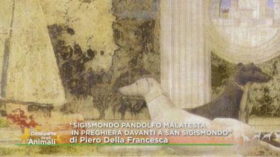 Uno dei capolavori di Piero della Francesca
